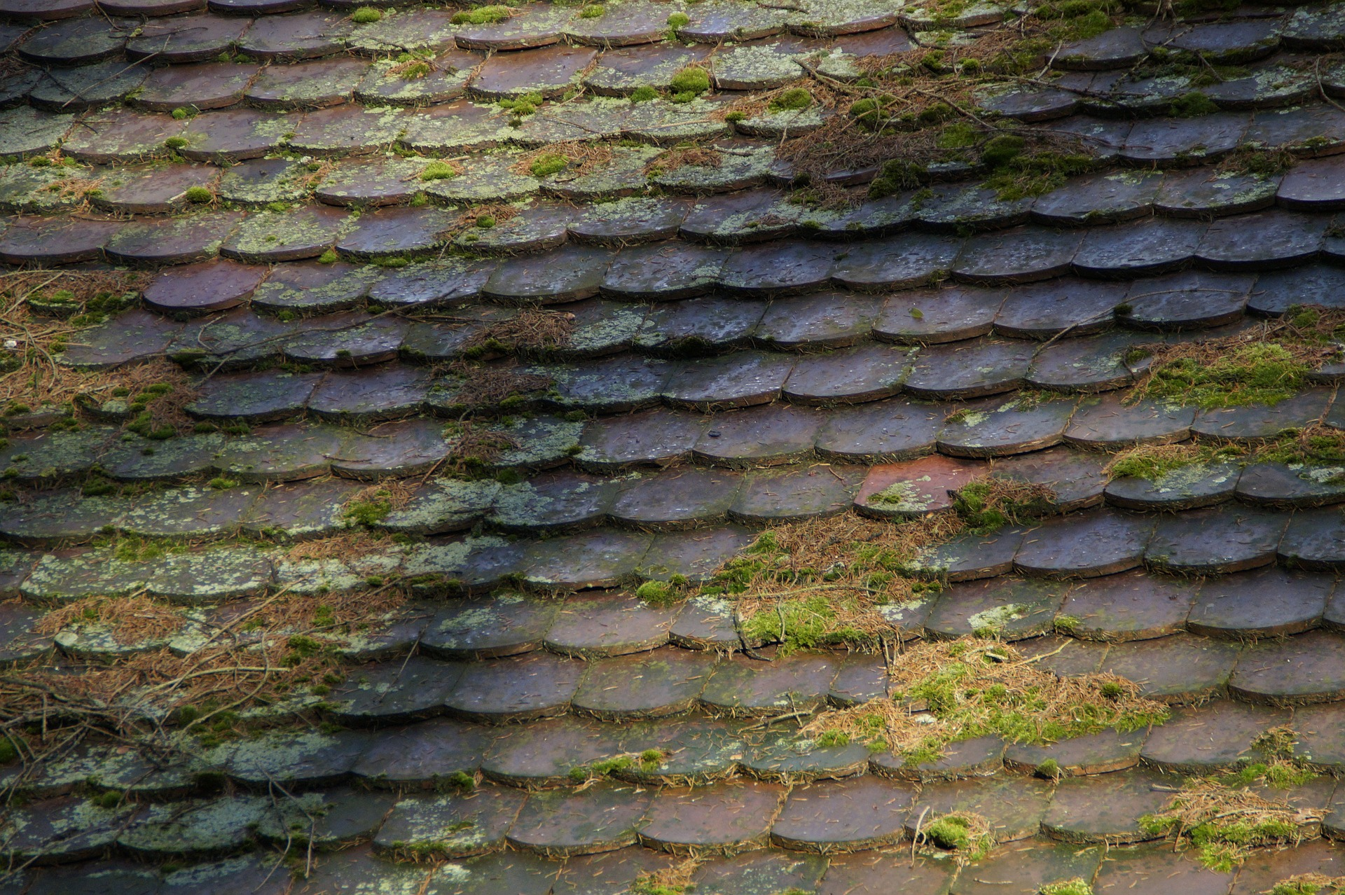 The Myth Of Maintenance Free Tile Roofs Homemasters