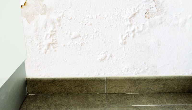 Water Spots on Walls